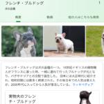 Google検索で3Dの動物が出てこないあなたへ